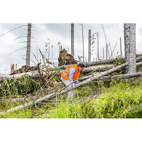 Lone workers in Remote or High Risk Environments